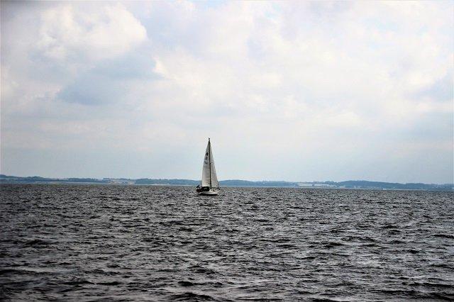 Limfjord