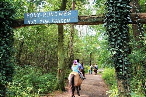 Ponyreiten Klövensteen