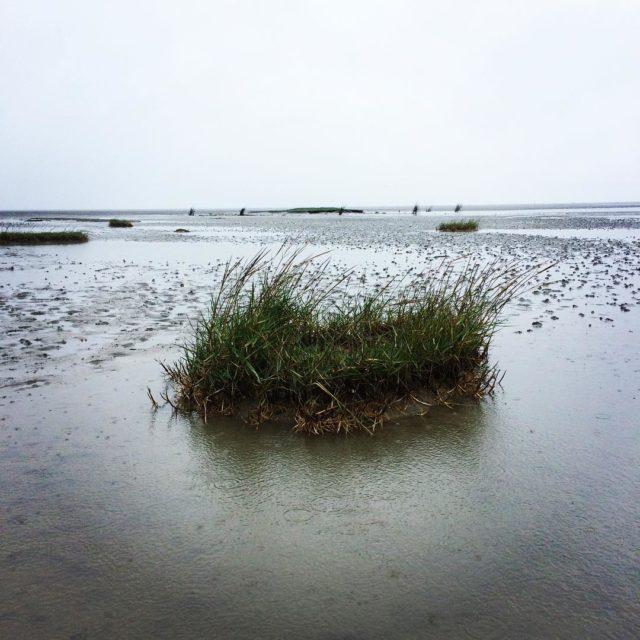 Die Nordsee ist auch bei Regen und grauen Wolken schn!hellip