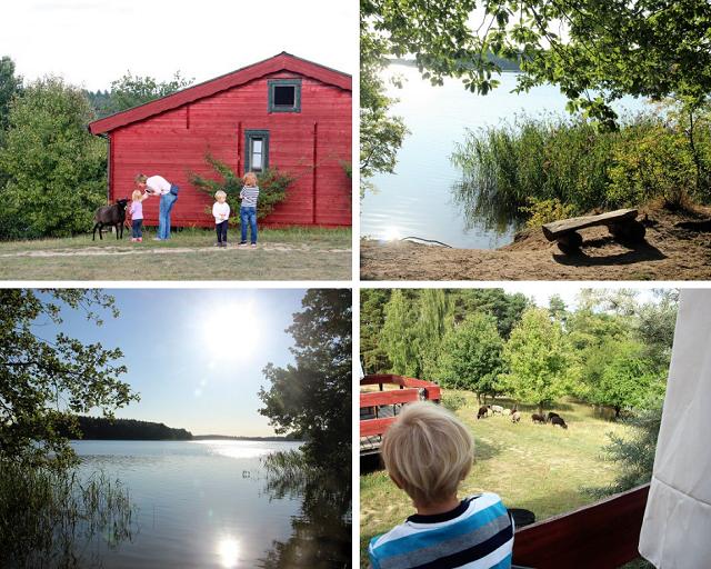 Biber Ferienhof -Mecklenburgische Seenplatte mit Kindern