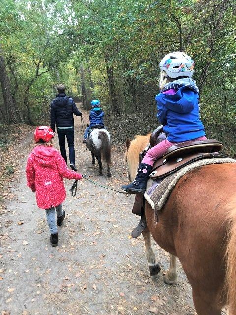 15 Ausflugstipps für Hamburg mit Kindern im Winter_Ponyreiten-Hamburg