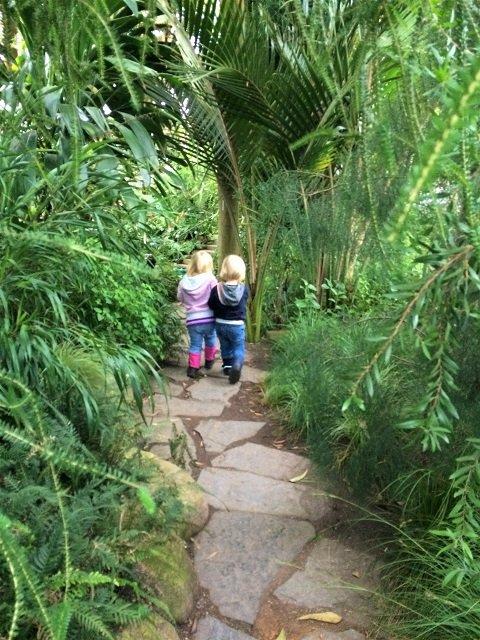 15 Ausflugstipps für Hamburg mit Kindern im Winter_Schaugewächshäuser Hamburg