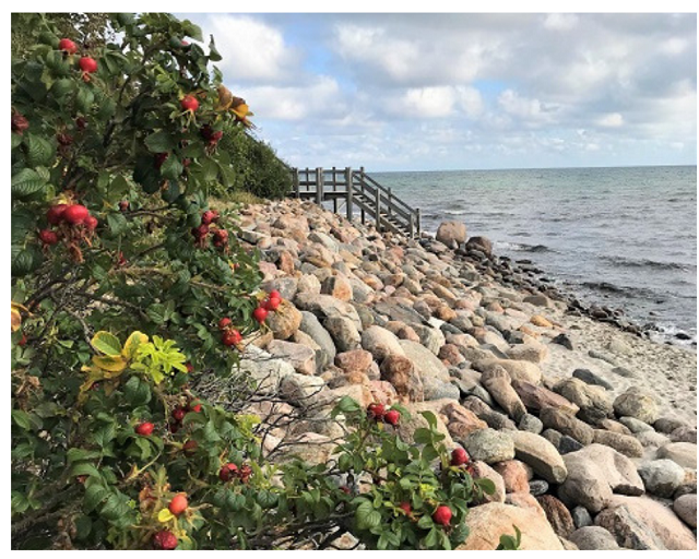 Ostsee mit Kindern