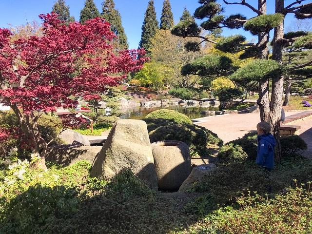 Der Japanische Garten in Planten un Blomen