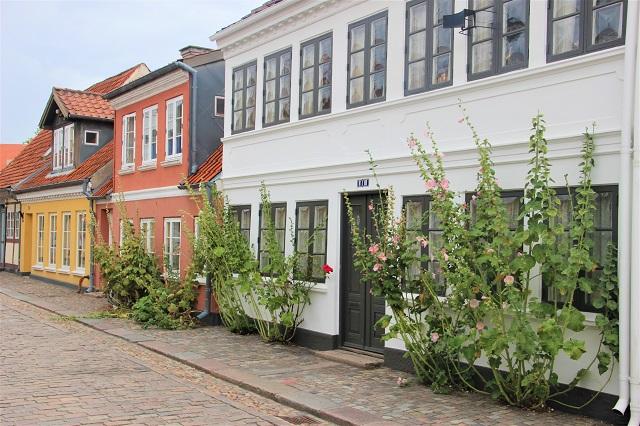 Insel Fünen Odense