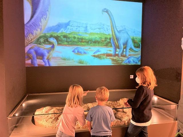 Musée Paleospace