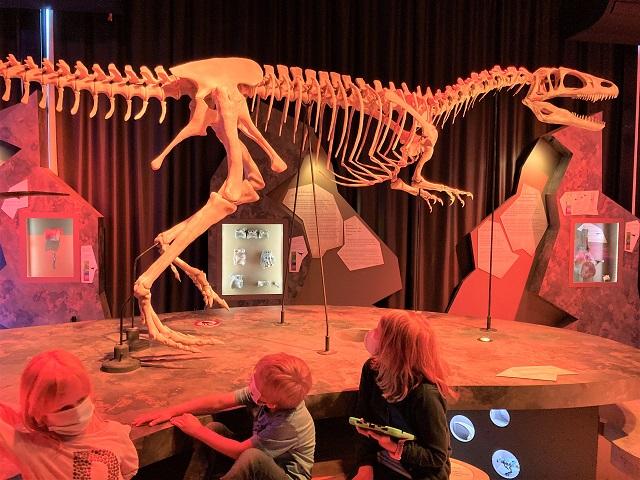 Normandie mit Kindern - Musée Paleospace
