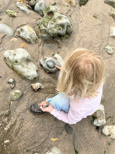 Normandie mit Kindern - Fossilien suchen
